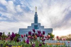 Draper temple 2017_2-471