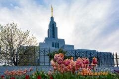 Draper temple 2017_7-476