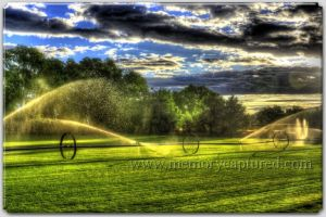 Morning irrigation (1)-c67.jpg