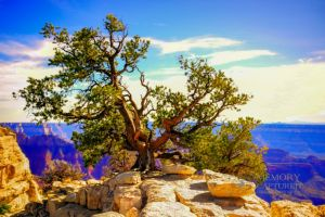 Grand Canyon HDR edit-c30.jpg