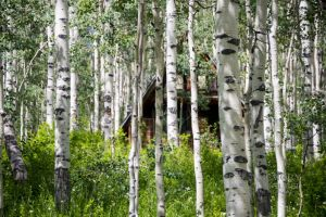 Retreat in Aspens-c58.jpg