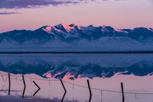 Bonneville reflections Dec 2015_1.jpg