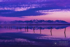 Bonneville reflections Dec 2015_12.jpg