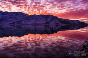 Bonneville reflections Dec 2015_13.jpg