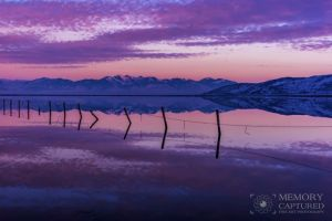 Bonneville reflections Dec 2015_8.jpg