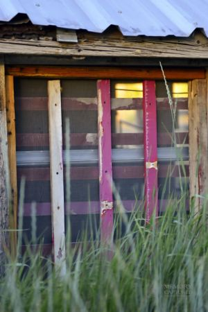 Old Chickencoop windows (2).jpg