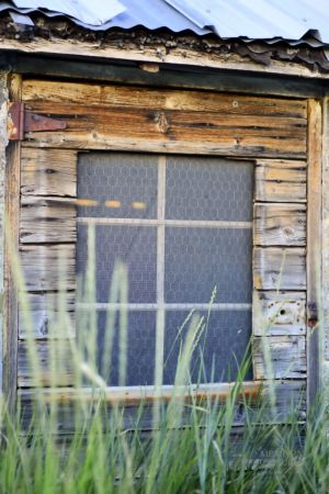 Old Chickencoop windows (3).jpg