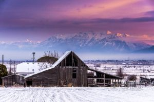 Old barn with snow at sunrise_3-c73.jpg